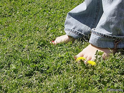http://bikoko.free.fr/Blog/pieds.jpg